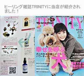 BODY ARTISTICが雑誌TRINITYに掲載されました